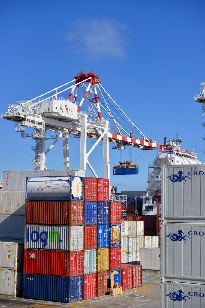Export Import Consultancy